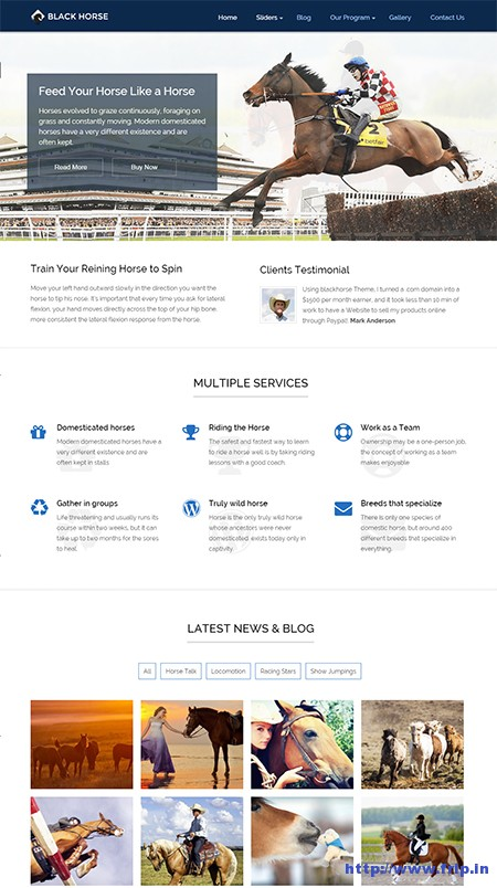 black-horse-equestrain-wordpress-theme