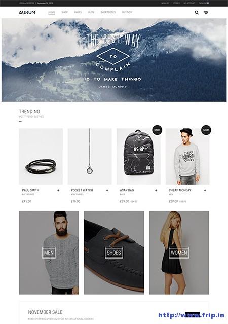 Aurum-Minimalist-Shopping-Theme