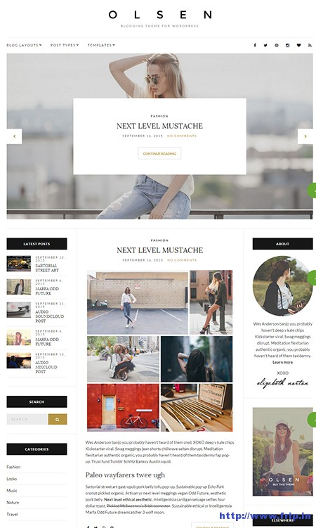 Olsen-Blogging-WordPress-Theme