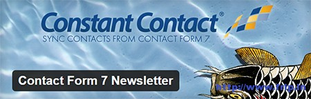 Contact-Form-7-Newsletter
