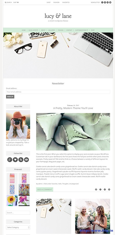 The-Lucy-&-Lane-WordPress-Theme