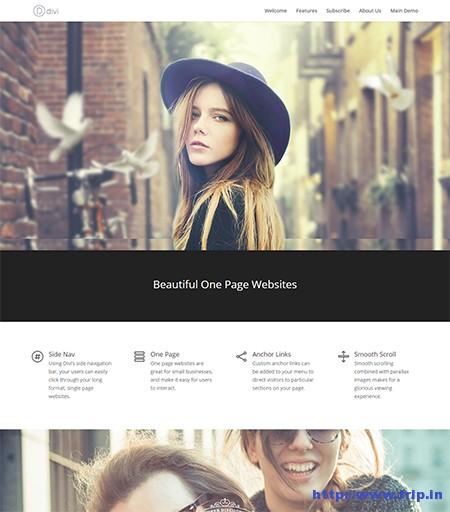 divi-one-page-wordpress-theme