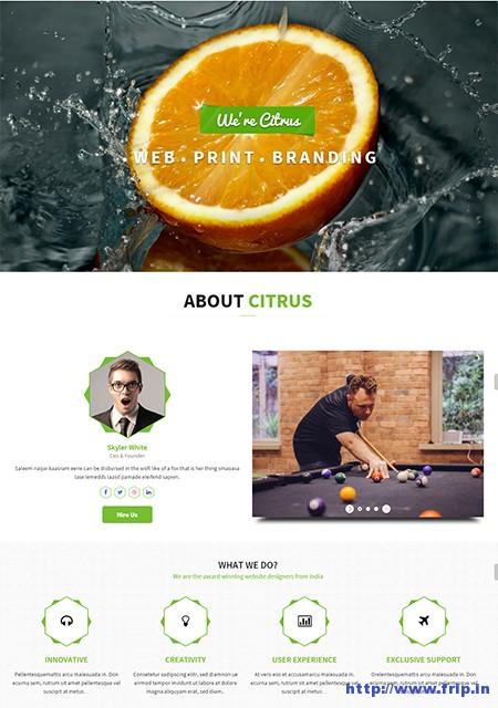 Citrus-One-Page-Multi-–-Purpose-Theme