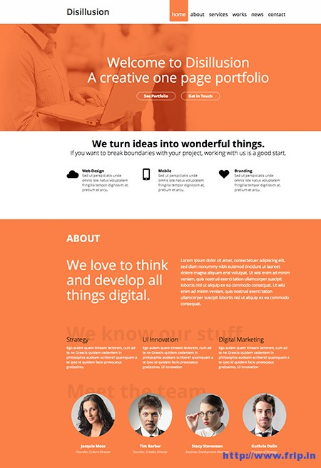 Disillusion-One-Page-WordPress-Theme