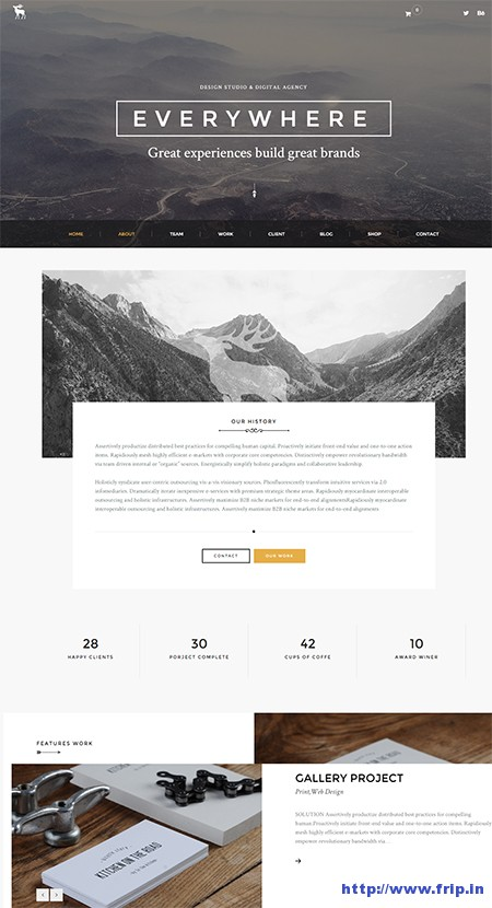 Every-–-Pro-One-Page-Portfolio-Theme