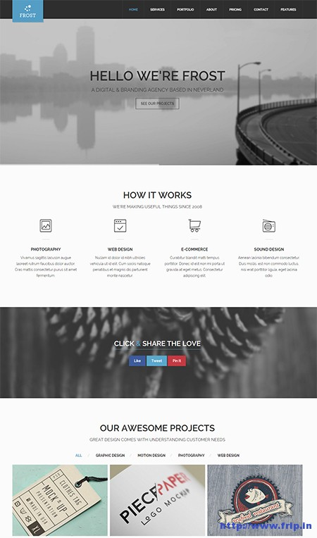 Frost-Multipurpose-One-Page-WordPress-Theme