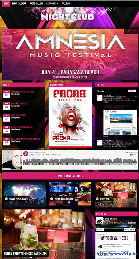nightclub-wordpress-theme