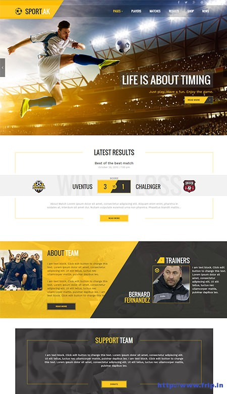 Sports-WordPress-Theme