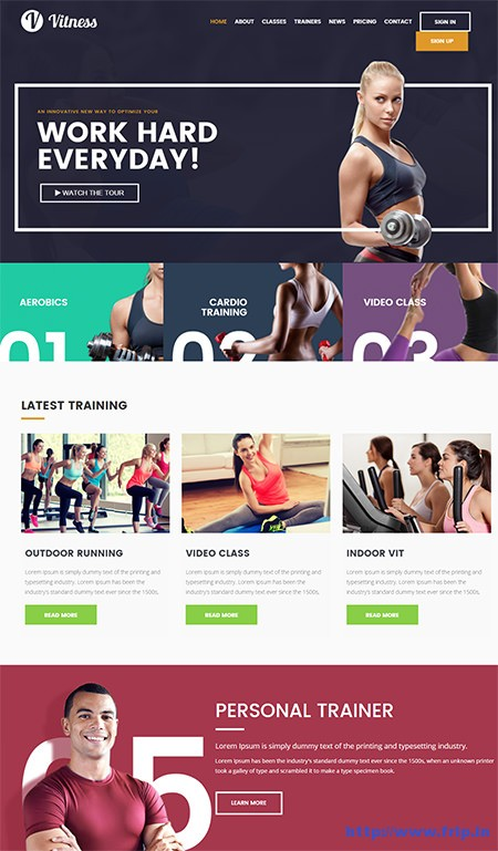 Viteness-Gym-Fitness-WordPress-Theme