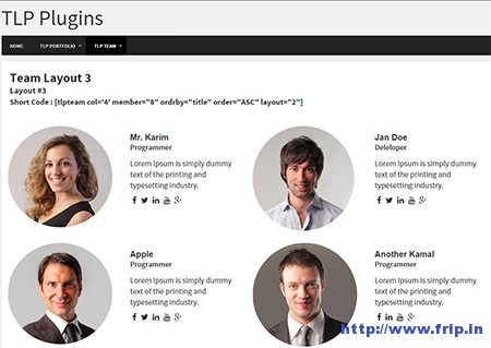 TLP-Team-WordPress-Plugin