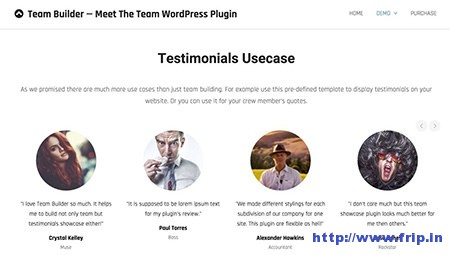 Team-Builder-–-Meet-the-Team-Plugin
