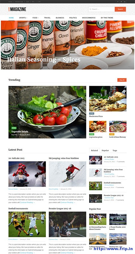 livemagazine online magazine wordpress theme