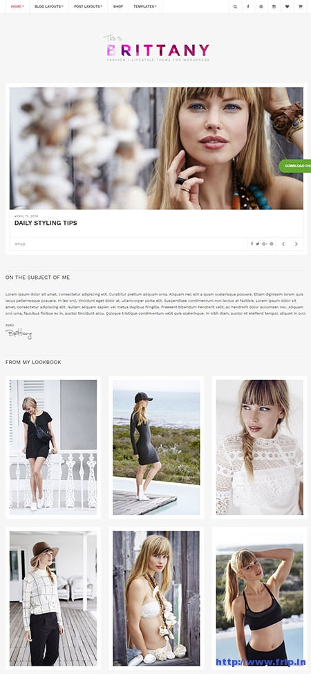 Brittany-blogging-wordpress-theme