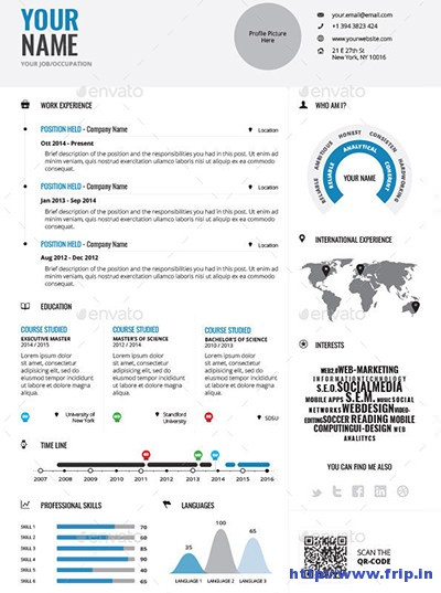 Infographic-Resume-Vol 1