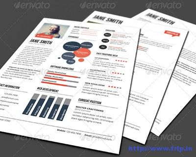 Infographic-Style-Resume-Template-–-Ver-2