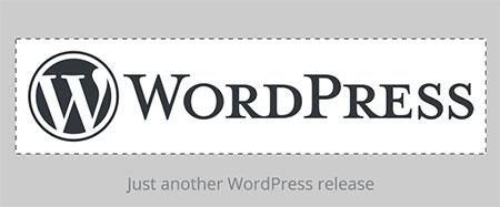 wordpress custom logos