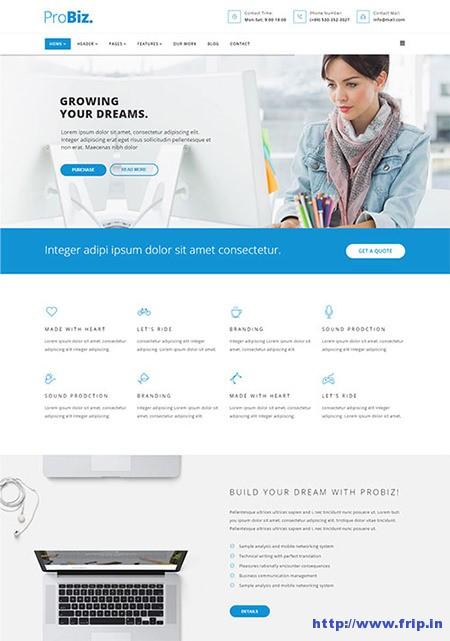 ProBiz-Multipurpose-Business-Template