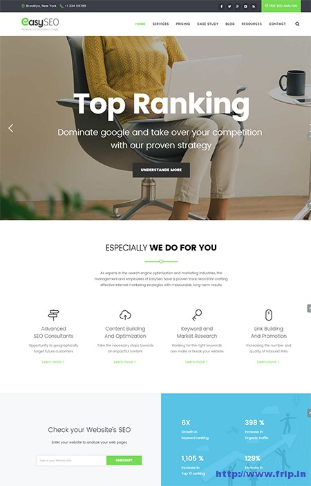 Easyweb-SEO-WordPress-Theme