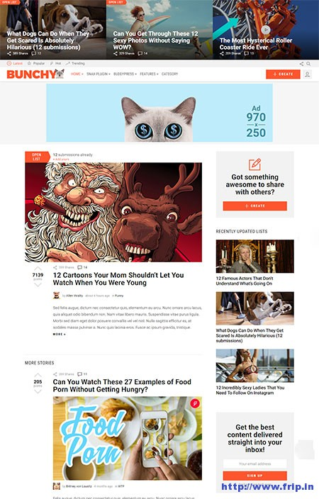 Bunchy-Viral-WordPress-Theme