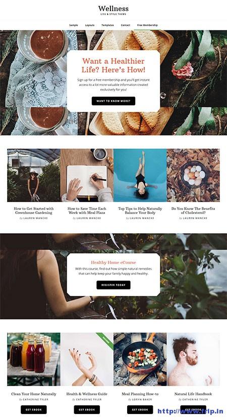 wellness-pro-life-&-style-wordpress-theme