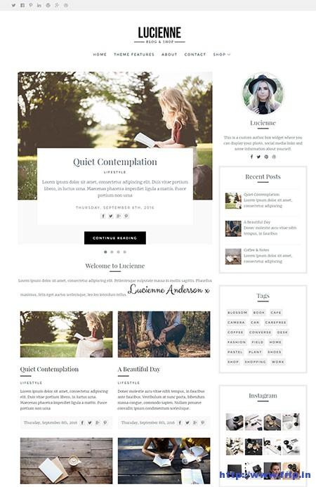 lucienne-minimal-wordpress-theme
