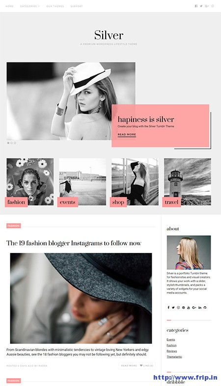 silver-wordpress-theme