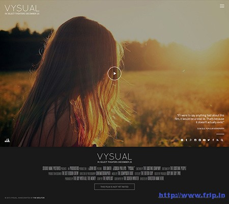 vysual-film-campaign-wordpress-theme