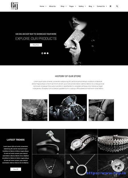 Big-Store-eCommerce-WordPress-Theme