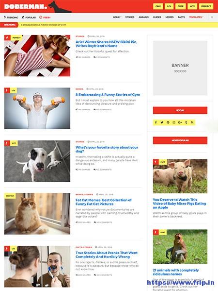 doberman-magazine-buzzfeed-clone-wordpress-theme