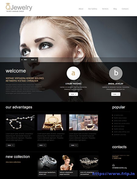 Jewelry-Responsive-WordPress-Theme