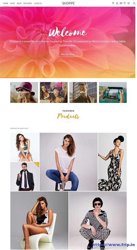 shoppe-ecommerce-wordpress-theme