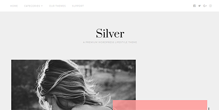 silver-lifestyle-wordpress-theme