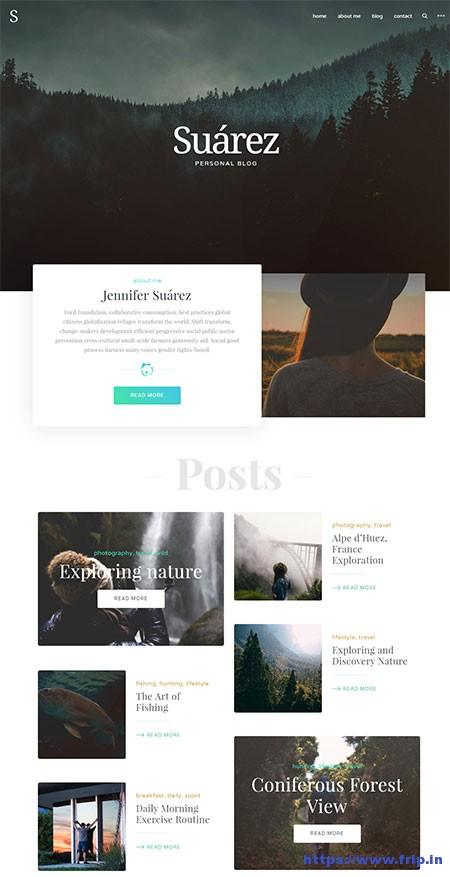 suarez-personal-blog-wordpress-theme