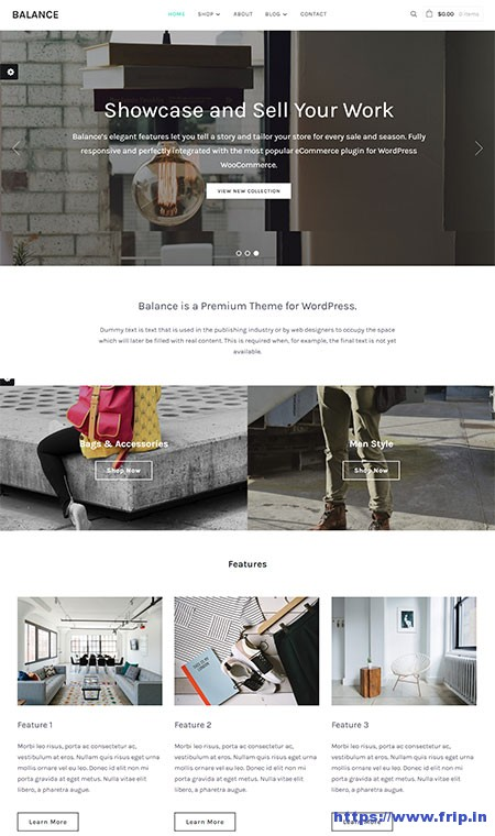 balance-business-wordpress-theme
