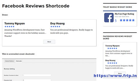 Facebook-Reviews-Pro-WordPress-Plugin