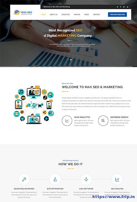 Max-SEO-HTML-Template