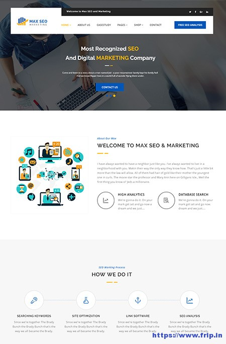 Max-SEO-WordPress-Theme