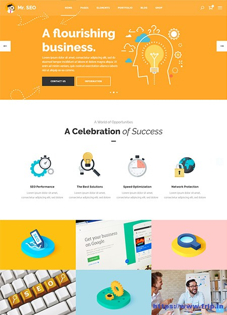 Mr-SEO-SEO-WordPress-Theme
