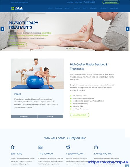 Pulse-Physiotherapy-Medical-WordPress-Theme
