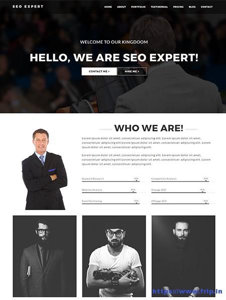 SEO-Expert-Responsive-Template