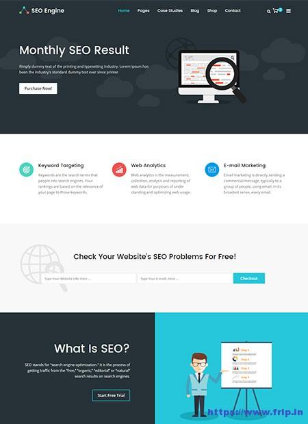 SEOEngine-SEO-website-Template