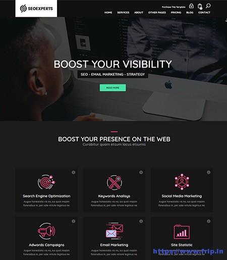 SEOExpert-SEO-HTML-Template