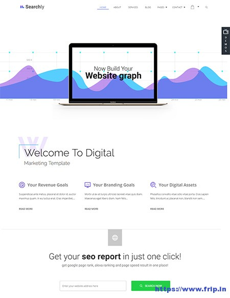 Searchly-SEO-Marketing-WordPress-Theme