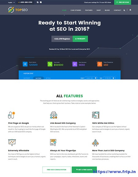 TopSEO-SEO-WordPress-Theme