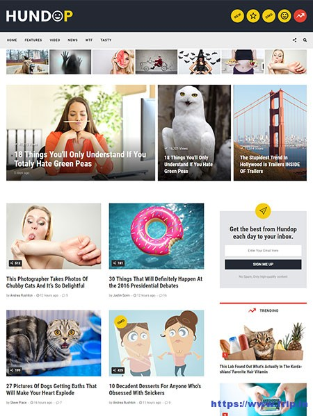 Hundop-Viral-&-Buzz-HTML-Template