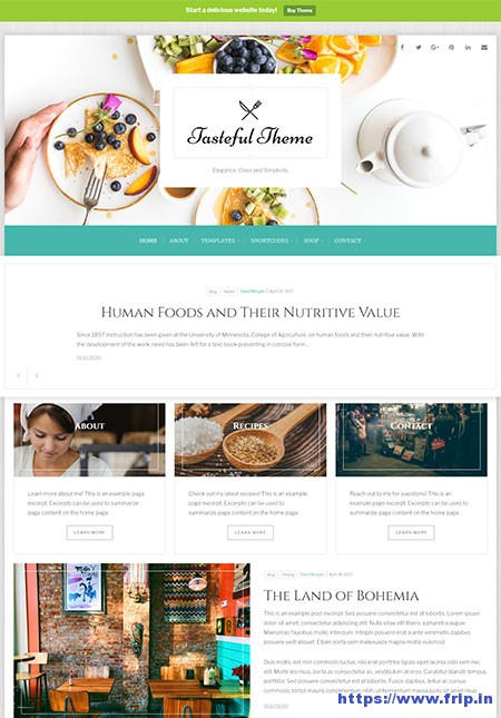 tasteful-food-wordpress-theme