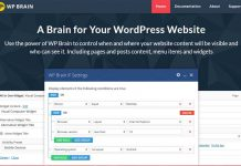 wp-brain-wordpress-plugin