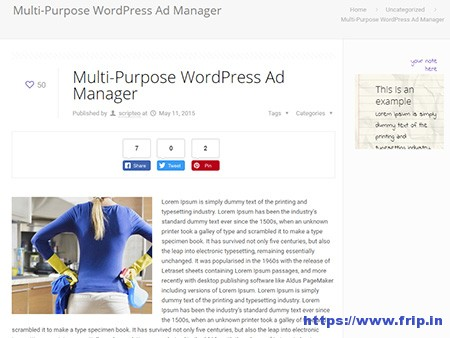 12 Best WordPress Ads Plugin 2020 (Free & Premium) | Frip in
