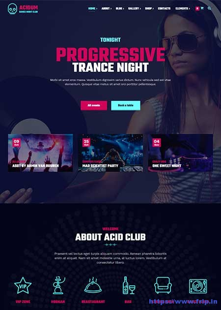 Acidum-Night-Club-WordPress-Theme