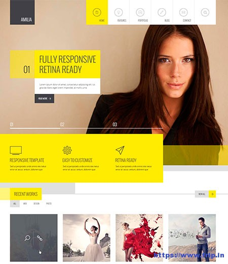 Amilia-Multi-Purpose-Responsive-Template